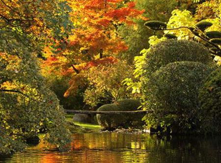 L 39 automne et ses jolies couleurs questions et r ponses avec l 39 inter - L automne et ses couleurs ...