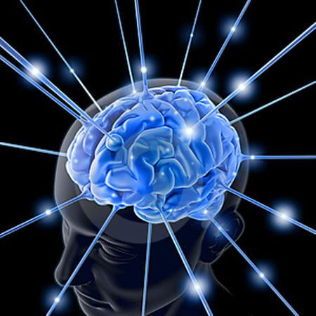 Cerveau en ébullition