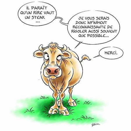 """Résultat de recherche d'images pour """"humour vache"""""""