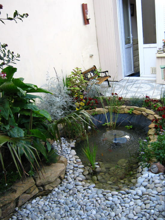 quelles plantes pour jardin zen jardin zen agrandir. Black Bedroom Furniture Sets. Home Design Ideas