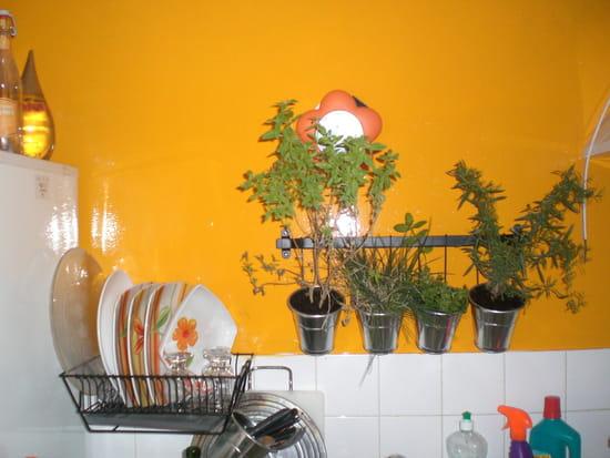 papier peint ou peinture pour refaire ma cuisine r solu. Black Bedroom Furniture Sets. Home Design Ideas