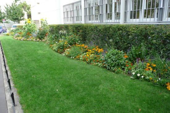 Comment avoir un beau gazon - Comment avoir un beau jardin ...