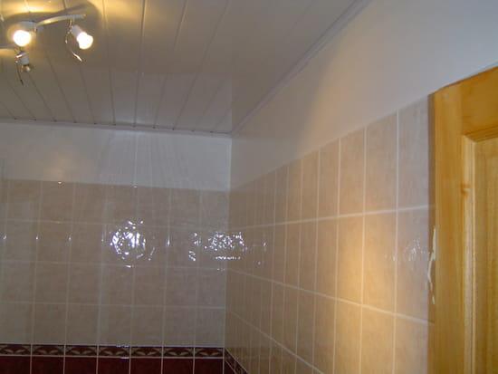 Comment refaire le plafond de salle de bains page 3 - Refaire un plafond de salle de bain ...