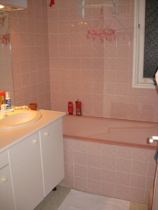 comment refaire ma salle de bains dans une autre ambiance tout en conservant la. Black Bedroom Furniture Sets. Home Design Ideas
