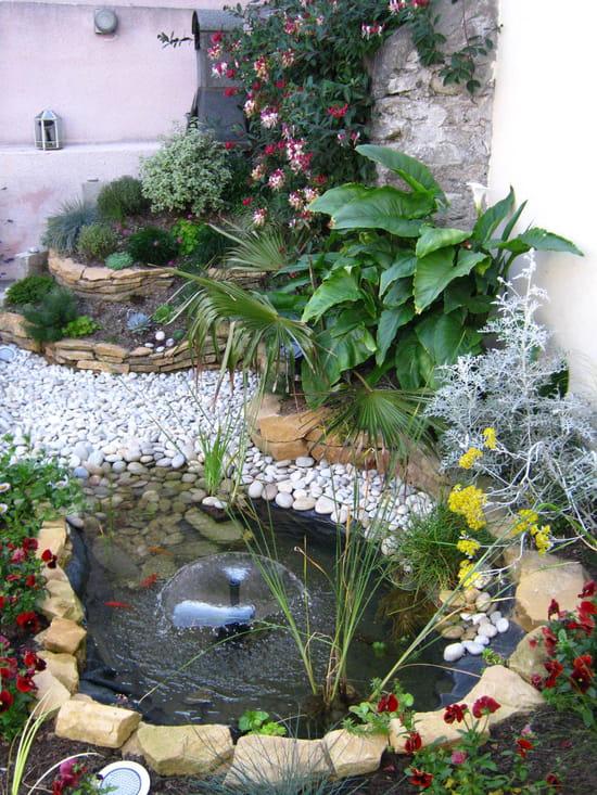 Comment nettoyer la partie hors eau de la b che du bassin for Bache bassin poisson