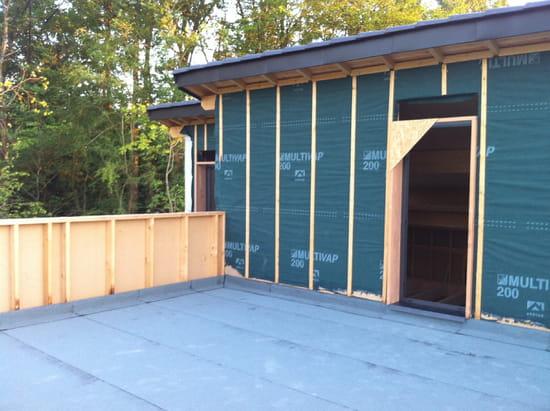 ai une maison ossature bois avec une partie toit terrasse,dans le