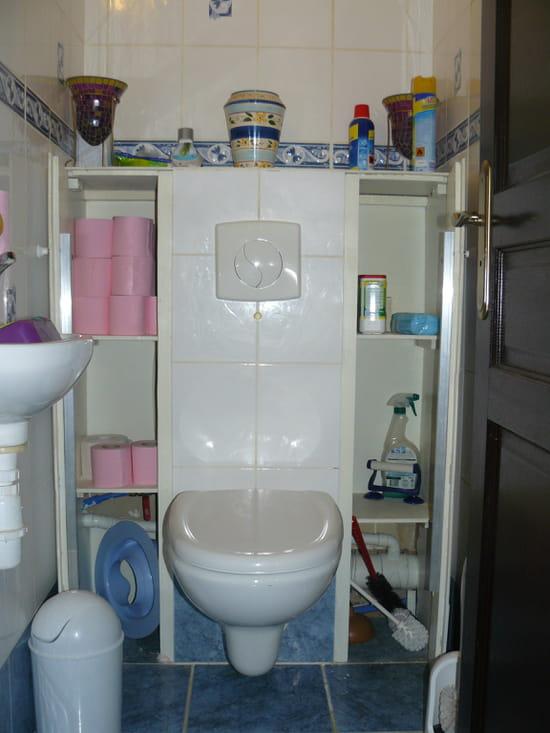 Wc suspendu d angle wc suspendu d angle sur enperdresonlapin - Comment peindre un wc ...