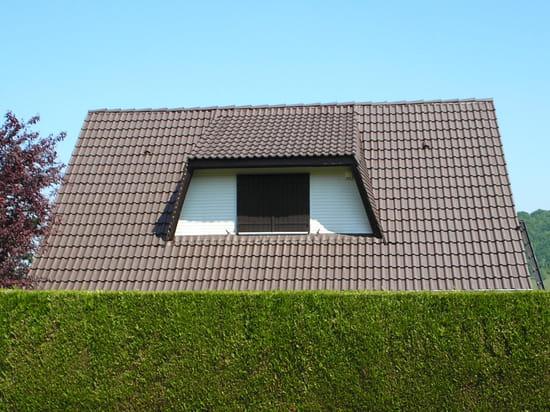 repeindre mon toit en tuiles beton outillage. Black Bedroom Furniture Sets. Home Design Ideas