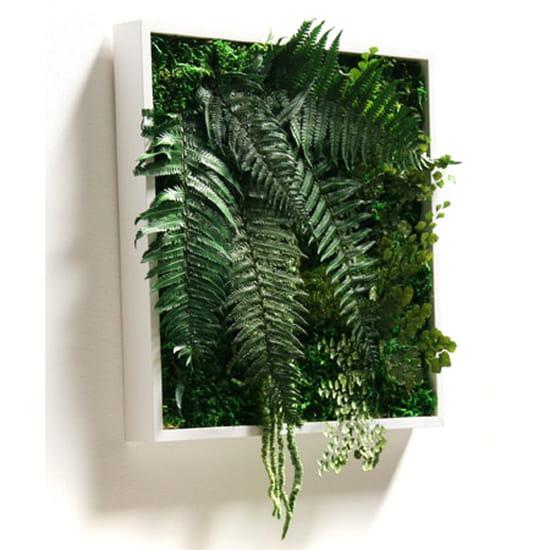 O trouver un cadre v g tal r solu shopping et for Ou acheter des plantes