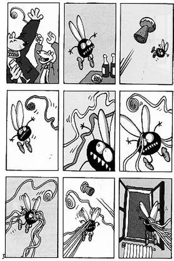 combien de mouches faut il tuer pour devenir serial killer questions et r ponses avec l. Black Bedroom Furniture Sets. Home Design Ideas